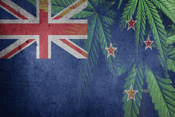 nz cannabis flag2