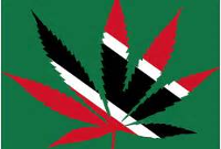 trinidad cannabis flag