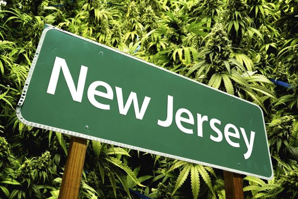 us nj cannabis